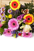 Colorful Flowers Greetings — Stock Photo