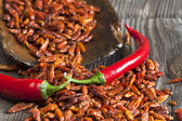 Two red chili peppers on dried chillies — Stock Photo