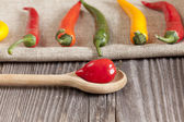 Red hot Habanero chili pepper on a cooking spoon — Stock Photo