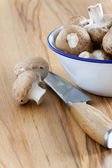Enamel cup with fresh mushrooms — Stock Photo