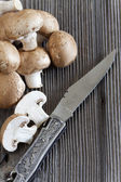 Mushrooms and a Hunting Knife with decorative handle — Stock Photo