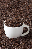 Coffee Cup filled with Beans — Stock Photo