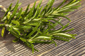 Rosemary twig on wooden board — Stock Photo
