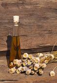 Dried poppy capsules and poppy oil — Stock Photo