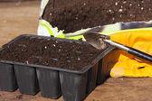 Plant trays, potting soil and gardening gloves — Stock Photo