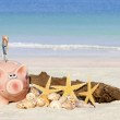 Piggy bank savings with banknotes — Stock Photo #45757087