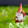 Постер, плакат: Little funny garden gnome is standing outside