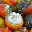 Close-up of different acorn squash — Stock Photo #45758025