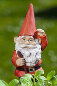 Little funny garden gnome in the garden — Stock Photo