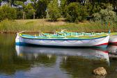 красочные гребных лодок — Стоковое фото
