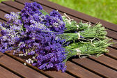 Fresh bunch of scented lavender — Stock Photo