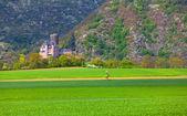 вид исторического burg katz замок на рейне — Стоковое фото