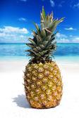 Pineapple Fruit on the tropical beach — Stockfoto