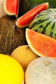 Melon Background — Stock Photo