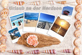 Sand background with instand photos and shells — Stock Photo