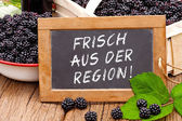 Slate blackboard with the Germans words: Frisch aus der Region — Stock Photo