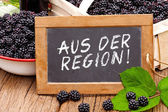 Slate blackboard with the Germans words: Aus der Region — Stock Photo