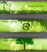 Green banner with grass and leaves — Stock Vector