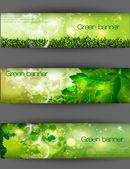 зеленый баннер с травы и листьев — Cтоковый вектор