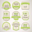eco and bio labels — Stock Vector