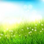 Spring — Stock Vector #40802345