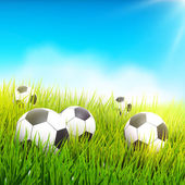 Soccer balls in the grass — Stock Vector