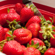 Strawberries in colander — Stock Photo
