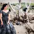Woman in black wedding gown with crows — Stock Photo