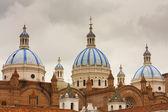 New Cathedral Cuenca Ecuador — Stock Photo