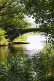 Arched bridge over green riverbank — Stock Photo