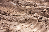 Tracks in the mud — Stock Photo
