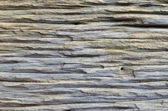 Closeup real wood — Stock Photo