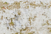 Dirty old wall — Stock Photo