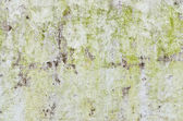 Rusty white wall for background user — Stock Photo