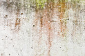 White rusty color wall for background user — Stock Photo