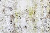 Parede de pintura oxidada danos para usuário de plano de fundo — Foto Stock