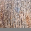 Stock Photo: Hardwood surface closeup