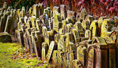 Old grave stones piled up against a wall, — Stock Photo