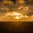 Lincolnshire wolds sunflare — Stock Photo