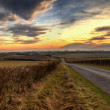 Stock Photo: Panoramic Wolds