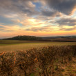Sunset in wolds - Stock Photo