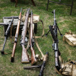 Ww2 guns — Stock Photo #29822863