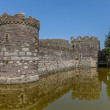 Stock Photo: Caslte moat