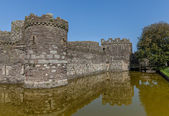 Caslte moat — Stock Photo