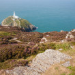 The Lighthouse at south stack — Stock Photo