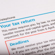 Tax return — Stock Photo #46190967
