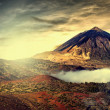 Mt teide — Stock Photo #46743065