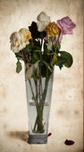 Wilted roses in vase — Stock Photo