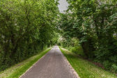 Narrow road in Lincolnshire Wolds — Stock Photo