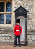 Guard — Stock Photo